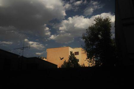 اخباراجتماعی ,خبرهای   اجتماعی ,سازمان هواشناسی