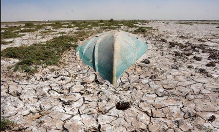 تالاب «هامون» خشک شد/ مرگ دو میلیون ماهی در هامون