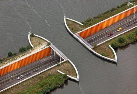 اخبارگوناگون,خبرهای گوناگون,هلند