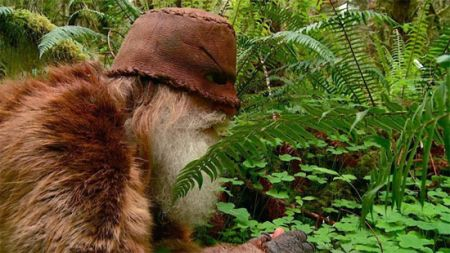 اخبارگوناگون,خبرهای گوناگون,مرد جنگلی