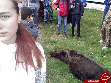 اخبارگوناگون,خبرهای گوناگون,سلفی با خرس