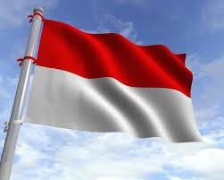 اخباراجتماعی ,خبرهای   اجتماعی, اندونزی