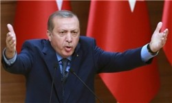اخبار بین الملل,خبرهای  بین الملل,رئیس جمهوری ترکیه