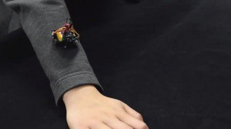 اخبارعلمی ,خبرهای   علمی, رباتهای کوچک