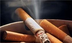 اخبارپزشکی,خبرهای  پزشکی ,دخانیات