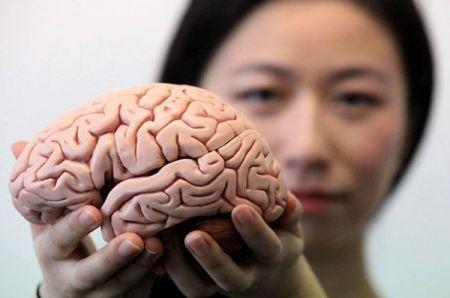 اخبارپزشکی ,خبرهای  پزشکی ,قابلیتهای مغزی