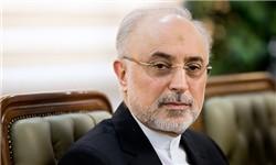 صالحی: واکنش قاطع و شدید ایران به نقض برجام / آغازگر نقض تعهدات نخواهیم