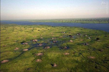 اخبارگوناگون,خبرهای گوناگون, سودان جنوبی