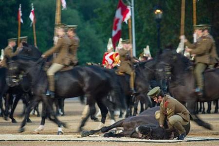 عکسهای جالب,عکسهای جذاب,نیروهای سواره