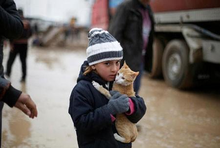 تصاویر دیدنی,تصاویر جالب,آزادسازی شهر موصل