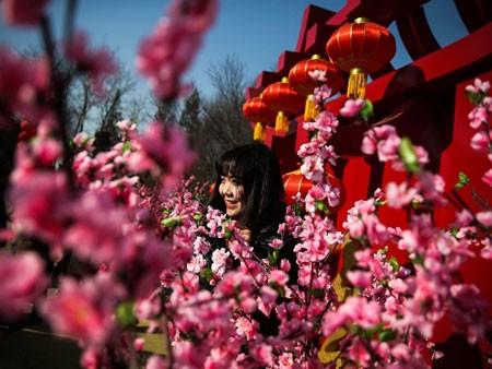 تصاویر دیدنی,تصاویر جالب,جشنواره بهار