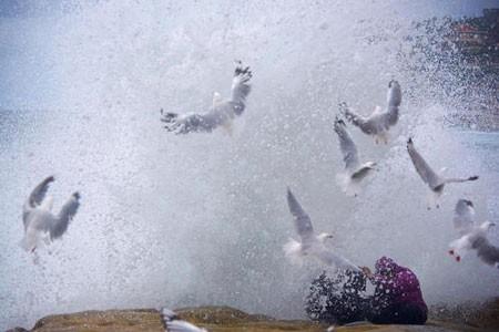 عکسهای جالب,تصاویر جالب,ساحل