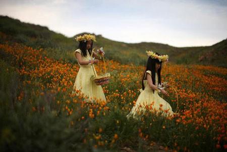 عکسهای جالب,عکسهای جذاب, طبیعت