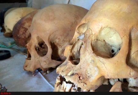 اخبار,اخبار گوناگون,کشف مومیایی 3500 ساله در مصر