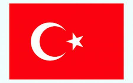 همدردی وزارت خارجه ترکیه به دنبال حادثه انفجار معدن گلستان