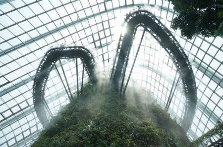 اخبارگوناگون ,خبرهای  گوناگون ,باغهای سنگاپور