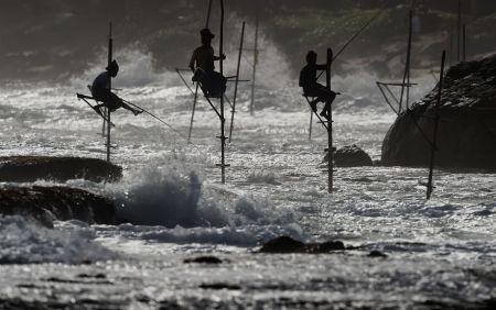 اخبارگوناگون ,خبرهای  گوناگون ,ماهیگیران شهر گالی در سریلانکا