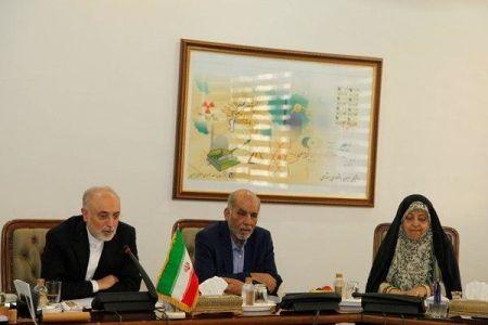 علیاکبر صالحی معرفیاش به عنوان وزیر علوم را رد کرد