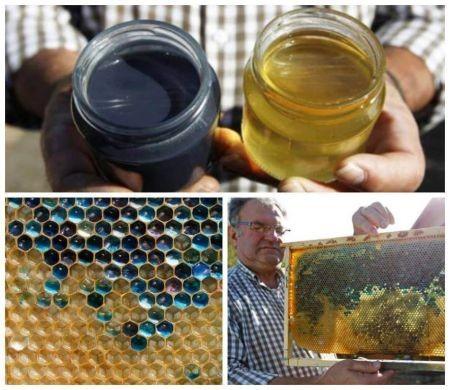 اخبار علمی,خبرهای  علمی, عسل آبی