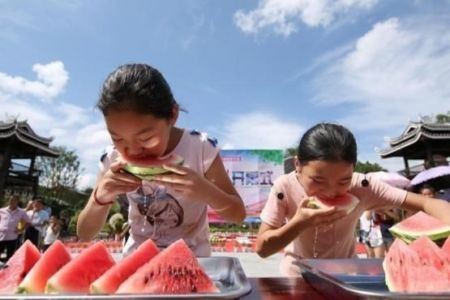 اخبارگوناگون ,خبرهای  گوناگون,جشنواره هندوانه