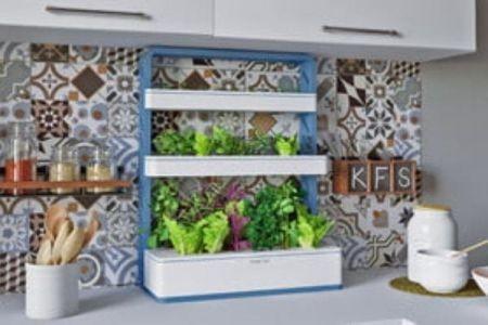 باغچه آپارتمانی برای کاشت میوه و سبزی اختراع شد