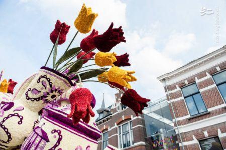 اخبار,عکس خبری,گلهای غول پیکر در هلند