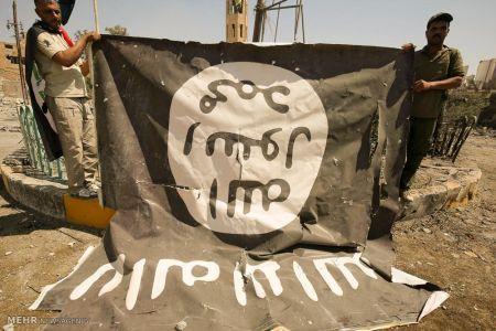 اخبار,عکس خبری,آزادسازی تلعفر