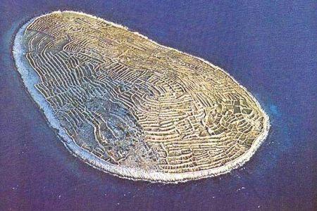 اخبار,اخبار گوناگون,جزیرهای که شبیه اثر انگشت است