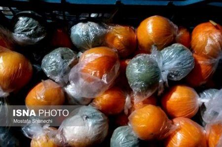 اخباراقتصادی,خبرهای اقتصادی , پرتقال