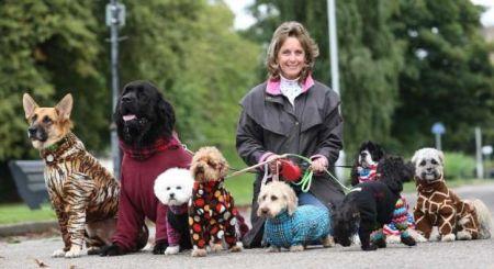 سگهایی که لباس آدمیزاد به تن میکنند!