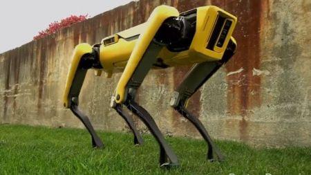 اخبارعلمی,خبرهای علمی,ربات بی سر و صدا