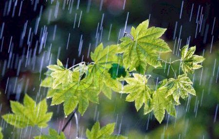 بارندگی و وزش باد شدید در مناطق زلزله زده از روز یکشنبه آغاز می شود