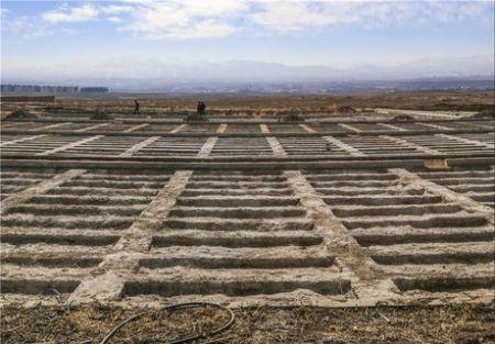 فردیسیها در البرز قبر 6 میلیونی را 18 میلیون تومان میخرند!