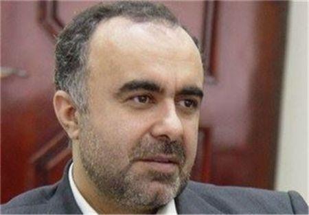 اخبار,اخبار اقتصادی,هادی حسینی