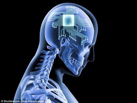 اخبار علمی ,خبرهای علمی , فناوری مغزی