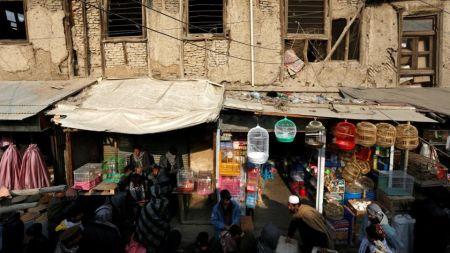 اخبار,اخبارگوناگون,بازار پرندهفروشان کابل
