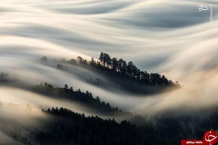 اخبار,اخبار گوناگون,تصویری زیبا از دره مه گرفته میل در آمریکا
