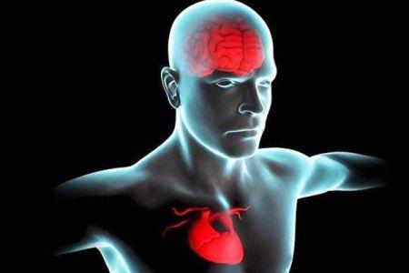 اخبارپزشکی ,خبرهای  پزشکی,نقایص قلبی