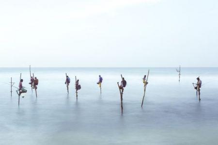 اخبار,اخبار گوناگون,روش خاص ماهیگیران سریلانکایی