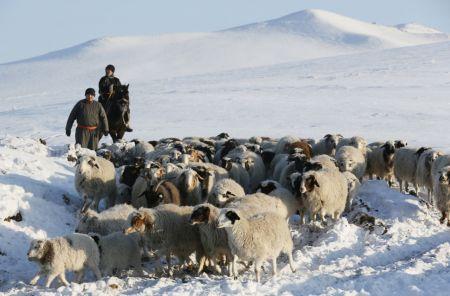 اخبار,اخبارگوناگون, زندگی عشایری در سرمای سیبری
