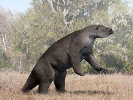 اخبار,اخبارگوناگون,شگفت انگیزترین حیوانات منقرض شده