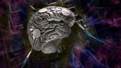 اخبار پزشکی,خبرهای  پزشکی,عملکرد مغز