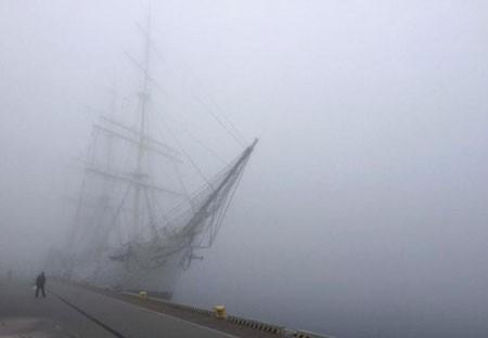 عکسهای جالب,عکسهای جذاب, مه غلیظ