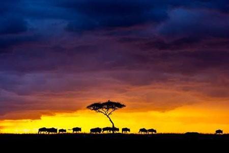 عکسهای جالب,عکسهای جذاب,پارک ملی