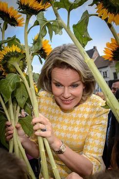 عکسهای جالب,عکسهای جذاب, ملکه بلژیک