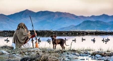 عکسهای جالب,عکسهای جذاب, شکارچی اردک