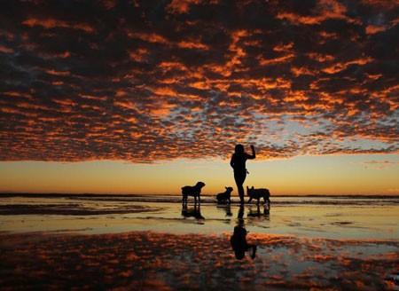 عکسهای جالب,عکسهای جذاب,هنگام غروب خورشید