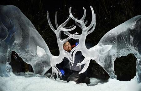 عکسهای جالب,عکسهای جذاب, نمایشگاه مجسمه های یخی