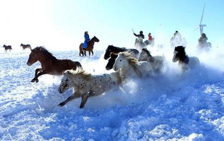عکسهای جالب,عکسهای جذاب, جشنواره برف و یخ