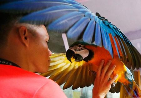 عکسهای جالب,عکسهای جذاب,خرچنگ چینی